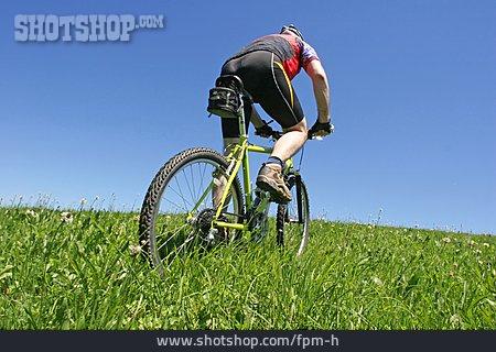 Sports & Fitness, Meadow, Mountain Bike, Cycling