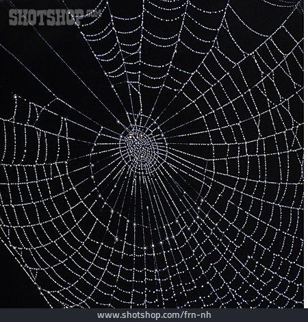 Spider Web, Pattern