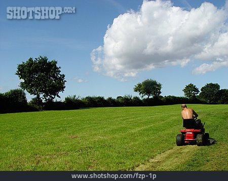 Lawn Mower, Lawn Mowing