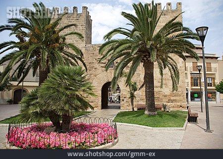 Majorca, Canary Islands