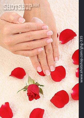 Skincare, Lotion, Moisturizer