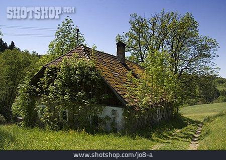 Meadow, Overgrown, Farmhouse