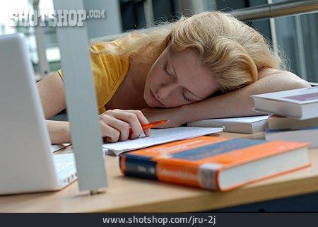 Stress & Struggle, Sleeping, Learning, Lazy