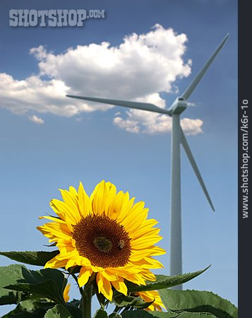 Environment Protection, Wind Power, Alternative Energy