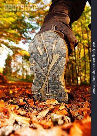 On The Move, Hiking, Autumn