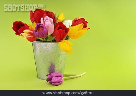 Tulip, Tulips Bouquet