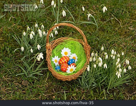 Easter, Easter Nest, Snowdrop