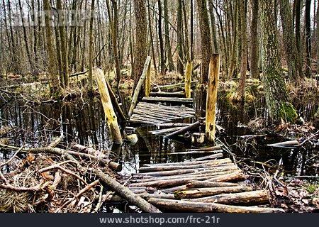 Pier, Ailing, Swamp