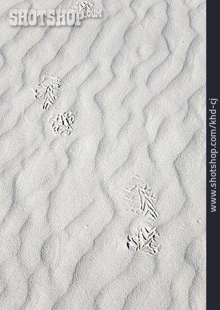 Sand, Footprint, Shoeprint