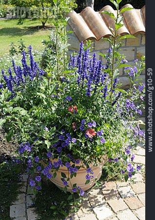 Garden, Kübel Plant, Flower Pot