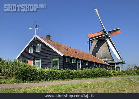Windmill, Zaan, Het Pink