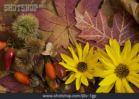 Sun Hat, Nature Materials, Autumn Decoration