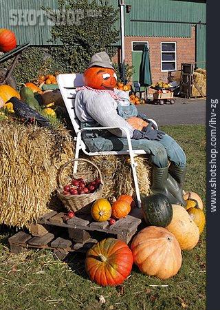 Squash, Pumpkin Harvest, Pumpkinman