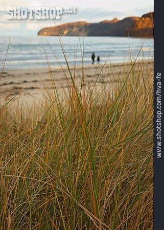 Autumn, Baltic Sea, Beach Walking