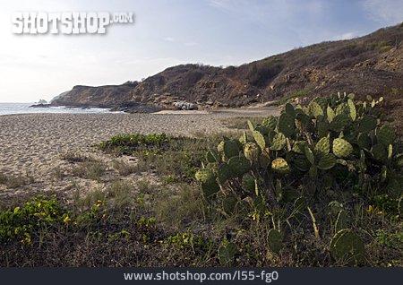 Pacific Coast, Oaxaca