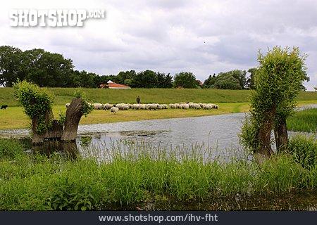 Elbe River, Lower Saxony, Elbdeich
