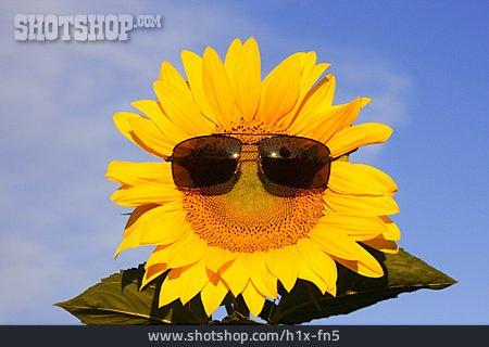Summer, Sunglasses