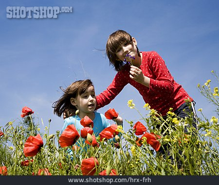 Leisure, Flower Meadow, Siblings