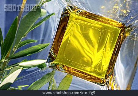 Olive Oil, Oil