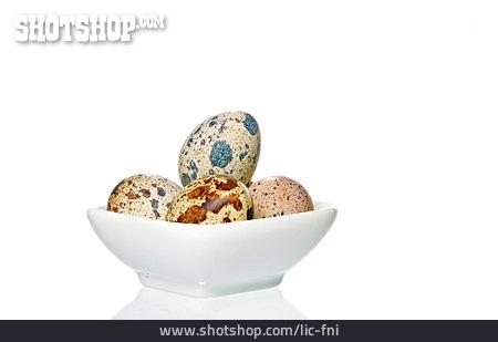 Quail, Bird's Egg