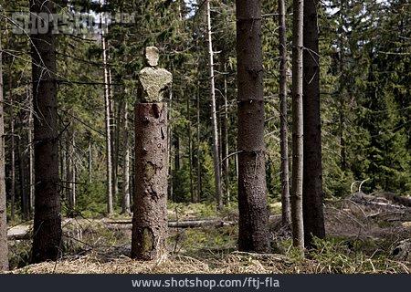Natural Art, Land Art