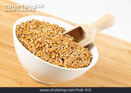 Wheat, Wheat Grain, Kamut