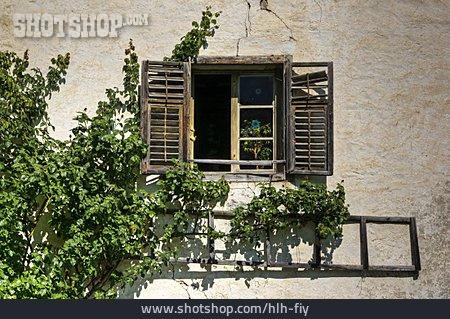 Window, Window Shutter