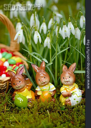 Easter, Easter Bunny, Snowdrop