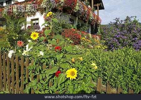 Flower Arrangement, Flower Bed, Balcony Flowers