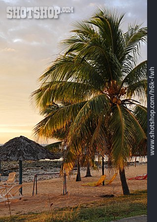 Beach, Playa Ancon