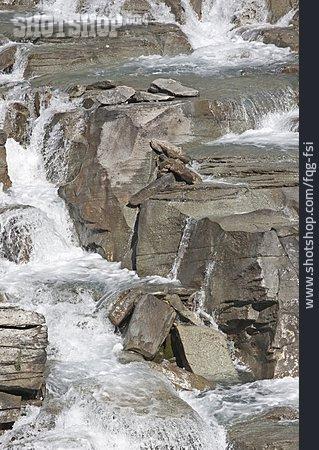 Torrent, Mountain Stream