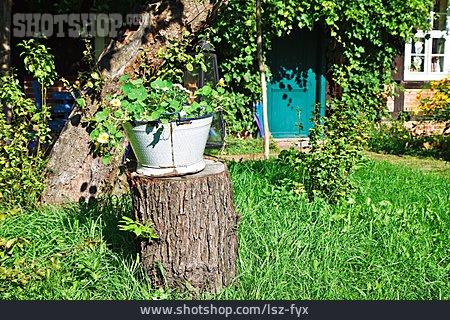 Garden, Rural Scene, Garden Decoration