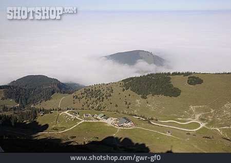 View, Fog, Chiemgau Alps