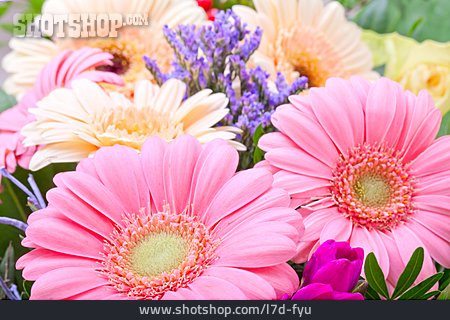 Flower, Bouquet, Gerbera