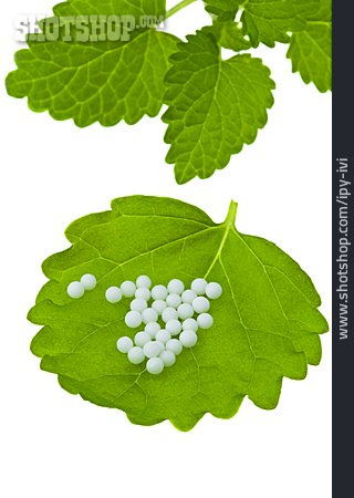 Homeopathic, Leaf, Globuli