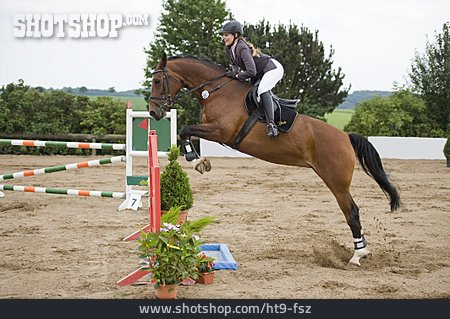 Riding, Horseriding, Horsewoman, Show Jumping, Tournament Horse