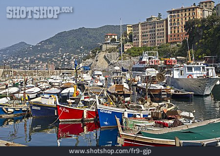 Harbor City, Fishing Port, Camogli