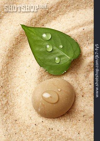 Wellness & Relax, Pebble, Leaf