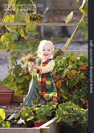 Girl, Harvesting, Vegetable Garden
