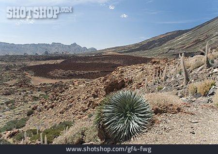 Tenerife, Volcanic Landscape, Las Canadas