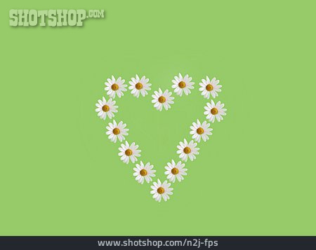 Heart, Spring