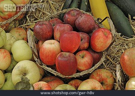 Apple, Fruit Stand, Apple Harvest