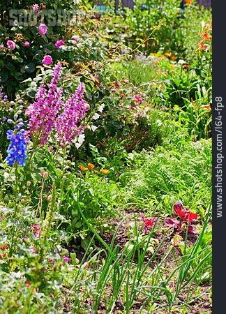 Garden, Companion Planting