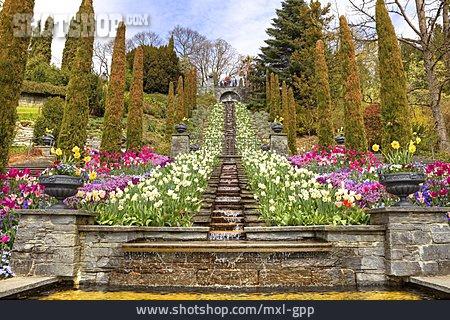 Castle Park, Water Stair, Island In Bloom