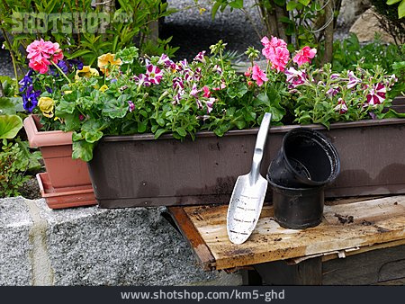 Flowers, Gardening, Windowboxes, Planting