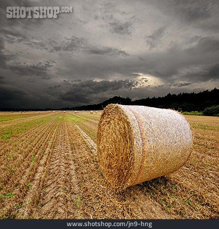 Field, Straw Bales, Bale, Round Bales