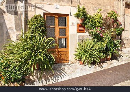 Door, Front Door