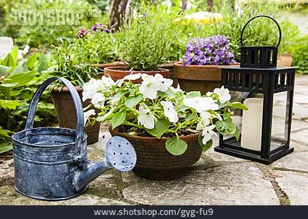 Garden, Flower Pot, Watering Can