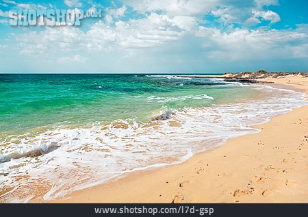 Beach, Sea, Surf, Atlantic Ocean