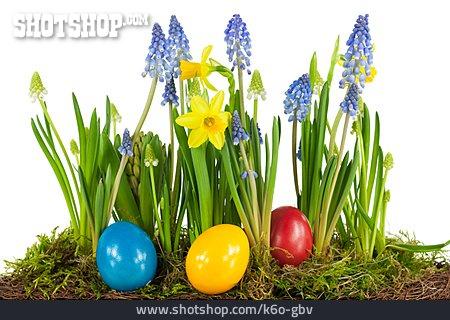 Easter, Spring Flower